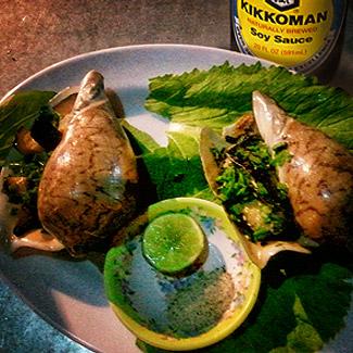 Моллюски в соевом соусе | Рецепты с фото