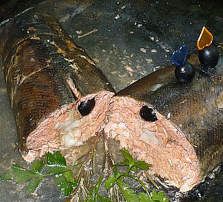 Рулет из кеты с филе сома   Рецепты с фото